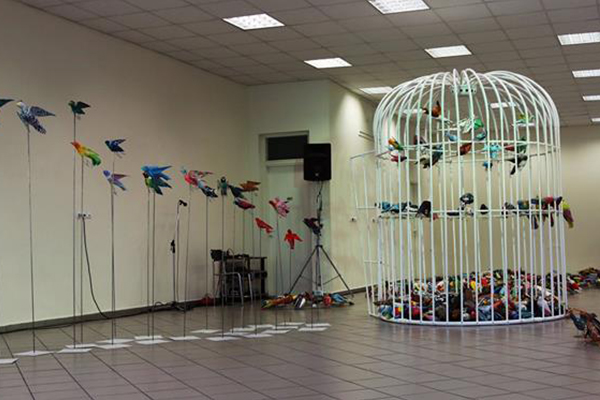 birds_0000_the installation_n